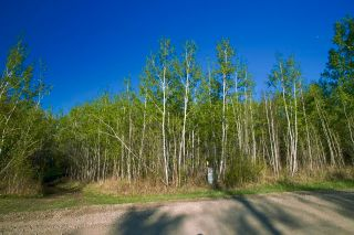 Photo 19: RR 21 TWP 565A Lake Nakamun: Rural Lac Ste. Anne County Rural Land/Vacant Lot for sale : MLS®# E4246330