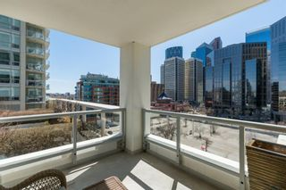 Photo 15: 825 222 RIVERFRONT Avenue SW in Calgary: Chinatown Apartment for sale : MLS®# A1029980
