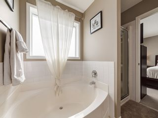 Photo 19: 87 Chapman Circle SE in Calgary: Chaparral House for sale : MLS®# 	C4064813