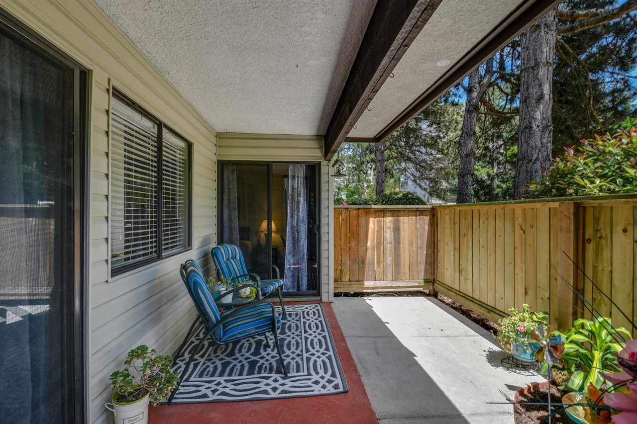 Wow! Great patio gets morning sun, lots of room for gardening and potted plants.