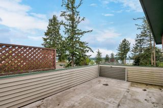 Photo 39: 201 McCarthy St in : CR Campbell River Central House for sale (Campbell River)  : MLS®# 875199