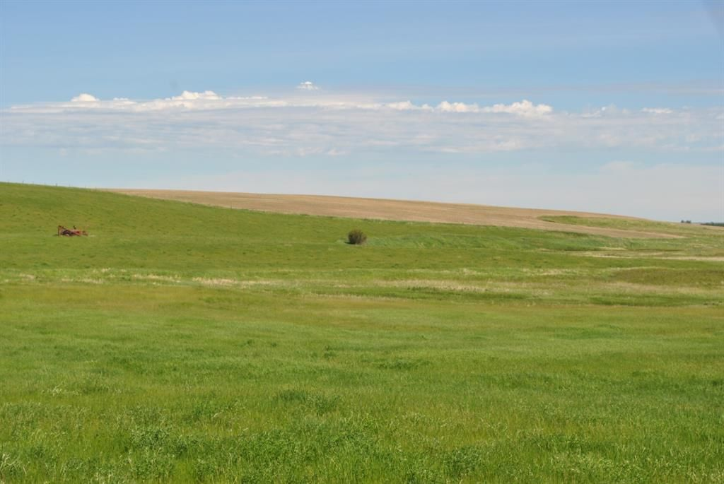 Main Photo: Range Road 16.4: Rural Starland County Land for sale : MLS®# A1049456