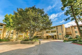 Photo 1: PACIFIC BEACH Condo for sale : 1 bedrooms : 1885 Diamond St #2-305 in San Diego