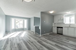 Photo 10: 23 Erin Meadows Court SE in Calgary: Erin Woods Detached for sale : MLS®# A1146245