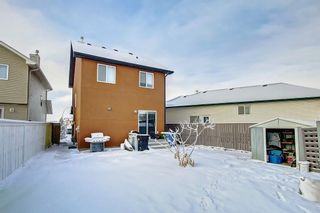 Photo 40: 239 SADDLEMEAD Road NE in Calgary: Saddle Ridge Detached for sale : MLS®# C4279947