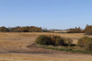 Photo 5: TWP 495 RR 232: Rural Leduc County Rural Land/Vacant Lot for sale : MLS®# E4216268