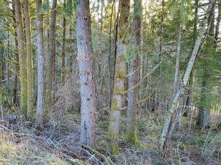 Photo 7: 3532 Parkview Cres in : PA Port Alberni Land for sale (Port Alberni)  : MLS®# 858454