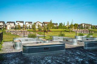 Photo 35: 316 6703 New Brighton Avenue SE in Calgary: New Brighton Apartment for sale : MLS®# A1063426
