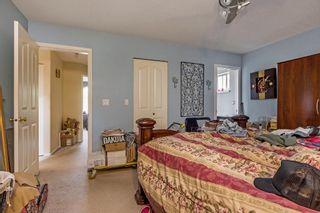 Photo 13: 23614 116 Avenue in Maple Ridge: Cottonwood MR House for sale : MLS®# R2177770