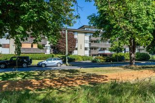 Photo 17: 211 964 Heywood Ave in Victoria: Vi Fairfield West Condo for sale : MLS®# 884085