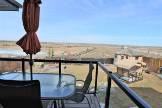 Photo 21: 91 DANFIELD Place: Spruce Grove House for sale : MLS®# E4230123