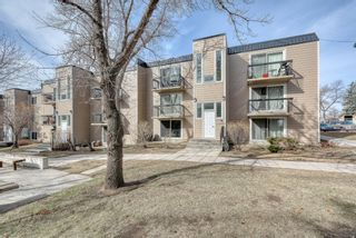 Photo 40: 306 315 Heritage Drive SE in Calgary: Acadia Apartment for sale : MLS®# A1090556