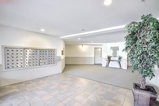 Photo 8: 1216 2395 Eversyde in Calgary: Evergreen Apartment for sale : MLS®# A1125880