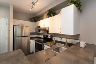 """Photo 10: 418 20200 56 Avenue in Langley: Langley City Condo for sale in """"The Bentley"""" : MLS®# R2612612"""