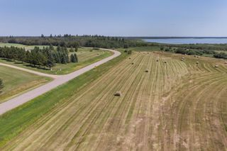 Photo 10: 51318 RANGE ROAD 210 A: Rural Strathcona County Rural Land/Vacant Lot for sale : MLS®# E4208934