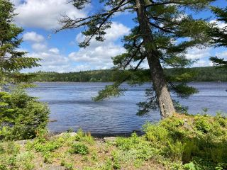 Photo 8: Lot 29 Anderson Drive in Sherbrooke: 303-Guysborough County Vacant Land for sale (Highland Region)  : MLS®# 202115631