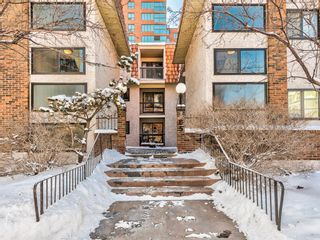 Photo 1: 207 305 25 Avenue SW in Calgary: Mission Apartment for sale : MLS®# A1068913