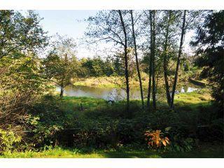 "Photo 16: 2 23281 KANAKA Way in Maple Ridge: Cottonwood MR Townhouse for sale in ""WOODRIDGE"" : MLS®# V1032160"