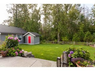 """Photo 37: 21806 44 Avenue in Langley: Murrayville House for sale in """"Murrayville"""" : MLS®# R2491886"""