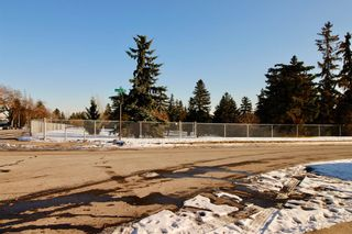 Photo 35: 915 40 Avenue NW in Calgary: Cambrian Heights Detached for sale : MLS®# A1050845