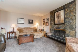 Photo 9: 4389 Columbia Dr in VICTORIA: SE Gordon Head House for sale (Saanich East)  : MLS®# 813897