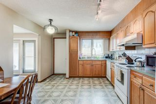 Photo 12: 203 Range Crescent NW in Calgary: Ranchlands Detached for sale : MLS®# A1111226