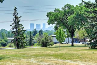 Photo 2: 431 THornhill Place NW in Calgary: Thorncliffe Detached for sale : MLS®# A1125824