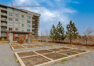 Photo 42: 805 46 9 Street NE in Calgary: Bridgeland/Riverside Apartment for sale : MLS®# A1093764