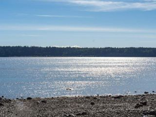 Photo 6: 104 539 Island Hwy in CAMPBELL RIVER: CR Campbell River Central Condo for sale (Campbell River)  : MLS®# 842310