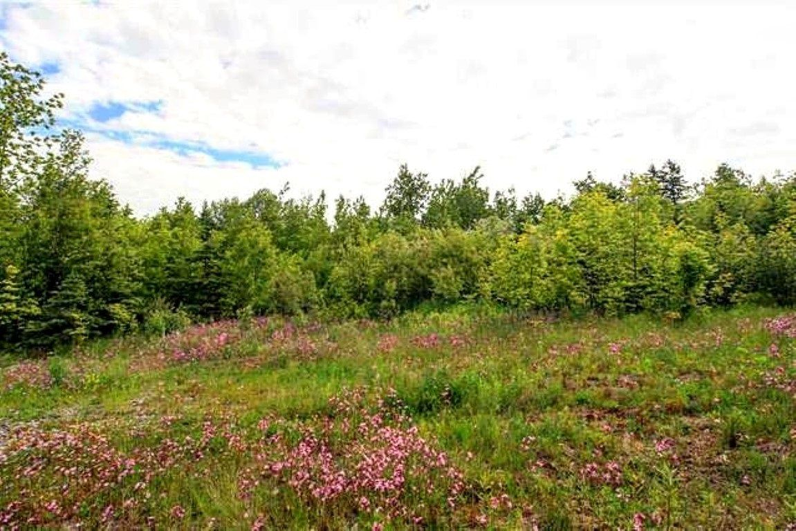 Main Photo: LOT Prospect Road in Rockland: 404-Kings County Vacant Land for sale (Annapolis Valley)  : MLS®# 202102665