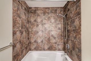 Photo 25: 6416 Larkspur Way SW in Calgary: North Glenmore Park Detached for sale : MLS®# A1127442
