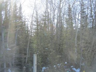 Photo 8: Heward Rd. in Fort Frances: Vacant Land for sale : MLS®# TB200316