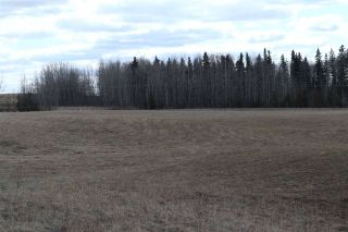 Photo 16: Twp 510 RR 33: Rural Leduc County Rural Land/Vacant Lot for sale : MLS®# E4239253