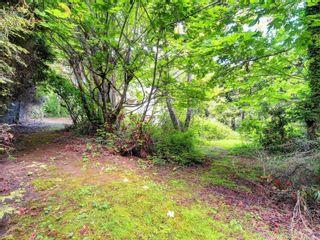 Photo 6: 8369 Lochside Dr in Central Saanich: CS Saanichton House for sale : MLS®# 877182