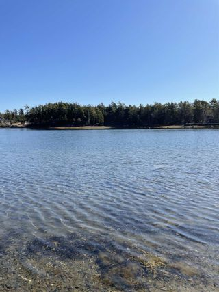 Photo 5: Highway 332 in Bayport: 405-Lunenburg County Vacant Land for sale (South Shore)  : MLS®# 202118989