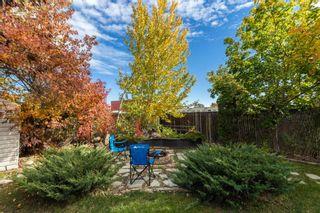 Photo 45: 32 CHUNGO Drive: Devon House for sale : MLS®# E4265731