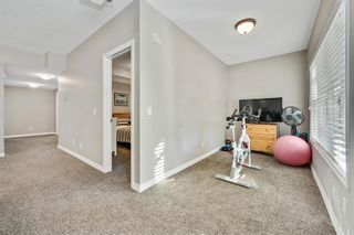 Photo 44: 59 Marquis Cove SE in Calgary: Mahogany Detached for sale : MLS®# A1087971