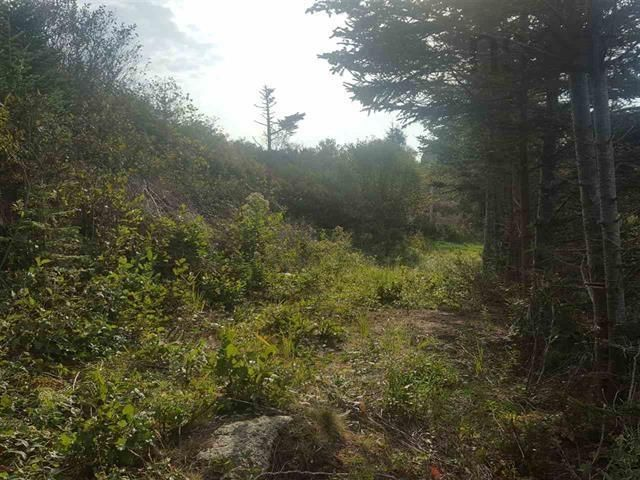 Main Photo: Back Bay Road in Terence Bay: 40-Timberlea, Prospect, St. Margaret`S Bay Vacant Land for sale (Halifax-Dartmouth)  : MLS®# 202121017