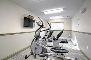 Photo 31: 102 12660 142 Avenue in Edmonton: Zone 27 Condo for sale : MLS®# E4263511