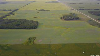 Photo 42: Zerr Farm in Big Quill: Farm for sale (Big Quill Rm No. 308)  : MLS®# SK864365