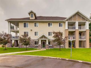 Photo 39: 102 428 CHAPARRAL RAVINE View SE in Calgary: Chaparral Condo for sale : MLS®# C4073512