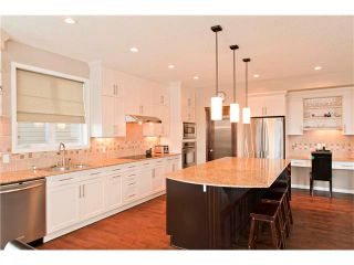 Photo 6: 250 CHAPARRAL RAVINE View SE in Calgary: Chaparral House for sale : MLS®# C4044317
