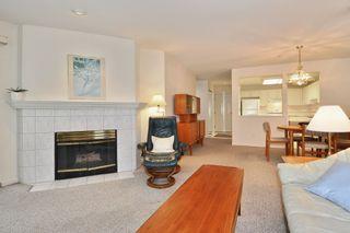 Photo 3: 216 19122 122 Avenue in Pitt Meadows: Central Meadows Condo for sale : MLS®# R2302440