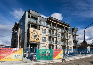 """Photo 3: 411 12310 222 Street in Maple Ridge: West Central Condo for sale in """"THE 222"""" : MLS®# R2136458"""