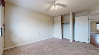 Photo 13: 38 7172 Coach Hill Road SW in Calgary: Coach Hill Row/Townhouse for sale : MLS®# A1059629