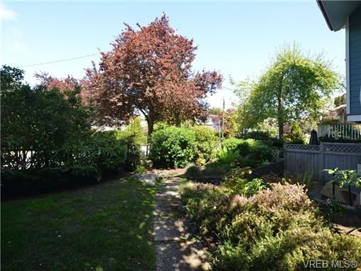 Photo 16: Photos: 2 225 Vancouver St in VICTORIA: Vi Fairfield West Row/Townhouse for sale (Victoria)  : MLS®# 699891
