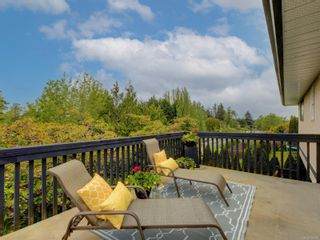 Photo 37: 3908 Lianne Pl in : SW Strawberry Vale House for sale (Saanich West)  : MLS®# 875878