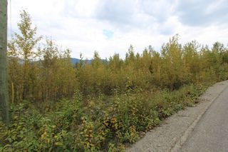 Photo 8: Lot 81 Sunset Drive: Eagle Bay Land Only for sale (Shuswap)  : MLS®# 10186644