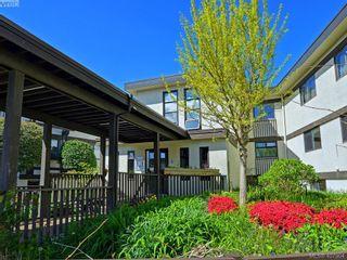 Photo 19: 113 1975 Lee Ave in VICTORIA: Vi Jubilee Condo for sale (Victoria)  : MLS®# 810647