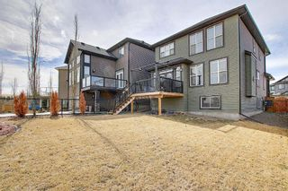 Photo 44: 107 Nolanshire Point NW in Calgary: Nolan Hill Detached for sale : MLS®# A1091457